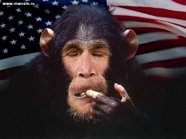 Так могут только америкосы , кортеж Обамы.